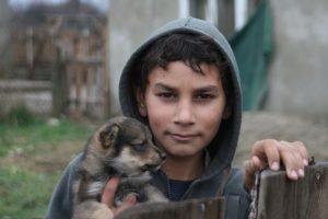 Romanipoika koiranpennun kanssa
